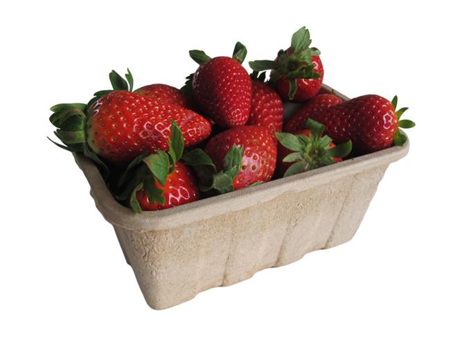 packaging sostenibile per frutta